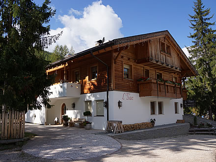 Bed & Breakfast Tiac - Alta Badia